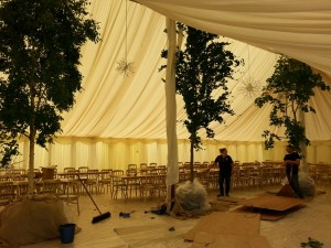 Very Large Trees inside a Very Large Marquee, see the staff in the picture for the scale.