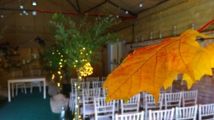 Autumn Colour in Poplar Barn